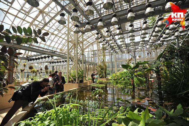 Ботанического сада вообще