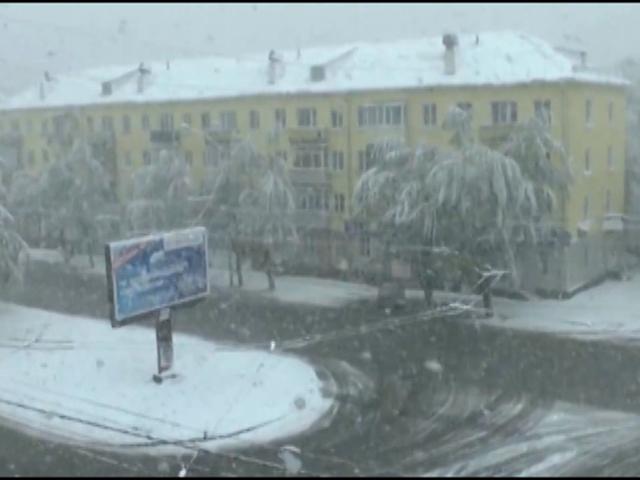 В Алтайском крае выпал снег