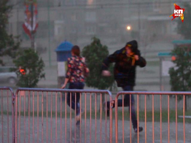 Сильный ливень и град в Минске валил деревья