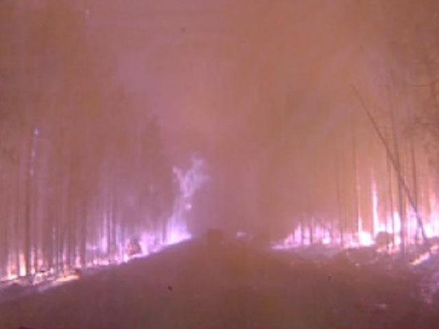 """""""Дорога в ад"""": водитель, ехавший по горящей сибирской тайге, выложив в ютьюб видео"""