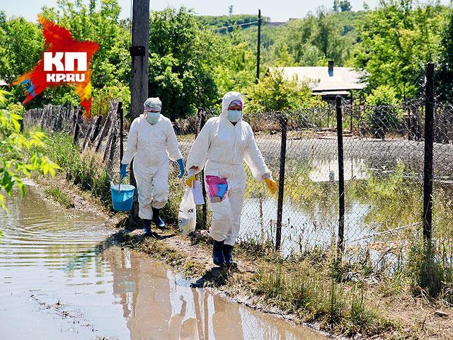 Дезинфекция в барнаульском поселке Ильича (июнь 2014 года)