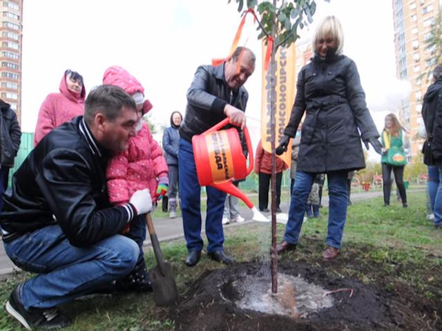 «Комсомолка» вместе с москвичами высадила  более 300 деревьев в рамках акции «Сделаем  Москву парком!»