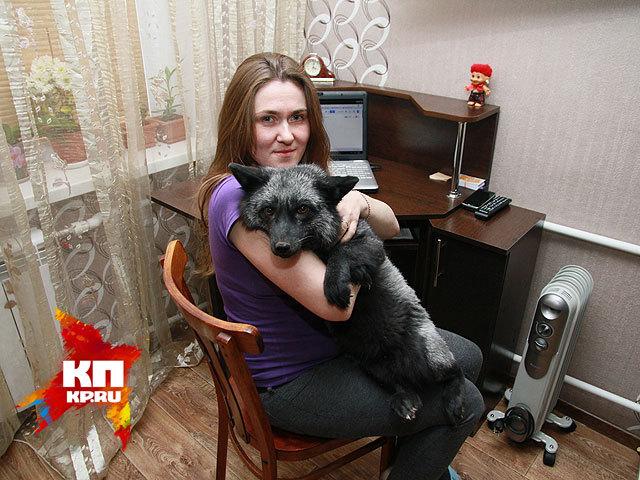 Жительница Барнаула приручила лису