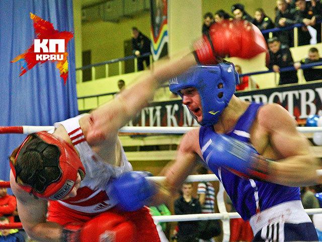 В Барнауле стартовал Всероссийский фестиваль бокса (ноябрь 2014 года)