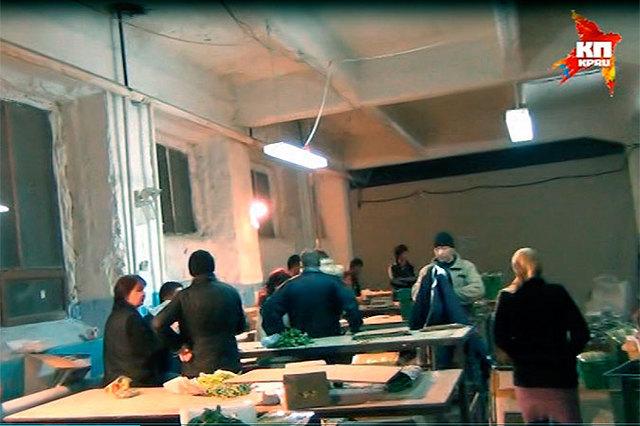 В Кинеле Самарской области служба УФМС задержала 22 нелегальных мигранта, фасовавших укроп и петрушку