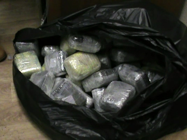 Украинские наркодилеры из Подмосковья финансировали карательную операцию на Донбассе