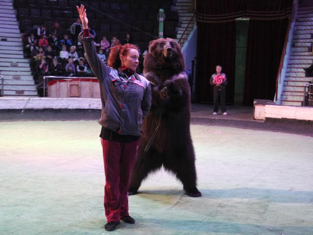 «Цирк забавных зверей» в Иркутске