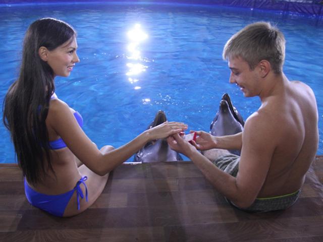 Необычное предложение руки и сердца: дельфин принес кольцо зрительнице во время шоу в Иркутске